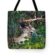 Peeking Through The Trees Tote Bag