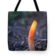 Peeping Red Eyed Fly Tote Bag
