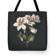 Pelargonium Album Bicolor, M De Gijselaar 1830 Tote Bag