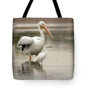 Pelican And Snowy Egret 6459-113017-1cr Tote Bag
