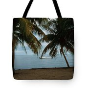 Pelican Beach Belize Tote Bag