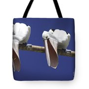 Pelican Burp Tote Bag