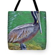 Pelican By The Pier Tote Bag