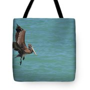 Pelican Contemplating A Water Landing In Aruba Tote Bag