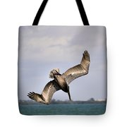 Pelican Diving For Dinner Tote Bag