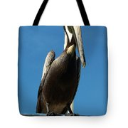 Pelican Dreams Tote Bag