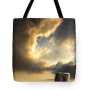 Pelican Evening Tote Bag by Meirion Matthias