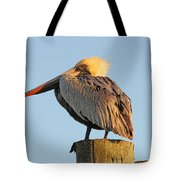 Pelican Feathers Tote Bag
