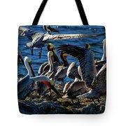 Pelican Fiesta Tote Bag