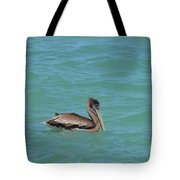 Pelican Floating In The Tropical Waters In Aruba Tote Bag