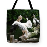 Pelican Hideaway Tote Bag