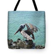 Pelican In Aruba Landing On Lava Rock Tote Bag
