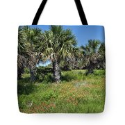 Pelican Island In Florida Tote Bag