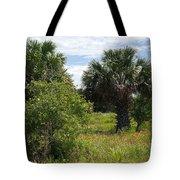 Pelican Island Nwr In Florida Tote Bag