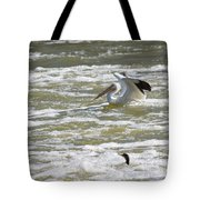 Pelican Landing And Cormorants Tote Bag
