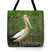 Pelican Mudmasks Tote Bag