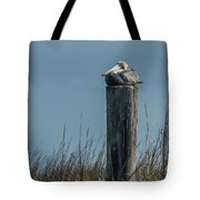 Pelican On A Piling Tote Bag