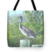 Pelican On Post Tote Bag