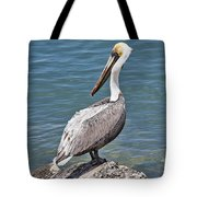 Pelican On Rock Tote Bag