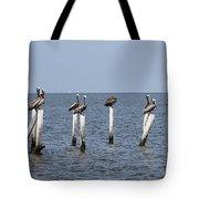 Pelican Parliament Tote Bag