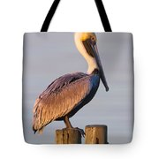 Pelican Perch Tote Bag