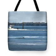 Pelican Porpoise And Fishermen Tote Bag