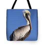 Pelican Pose Tote Bag