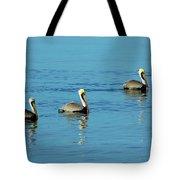 Pelican Racers Tote Bag