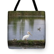 Pelican Reflection Tote Bag