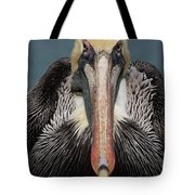 Pelican Stare Tote Bag