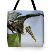 Pelican Wings Tote Bag