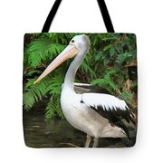 Pelican With A Bird Park In Bali Tote Bag