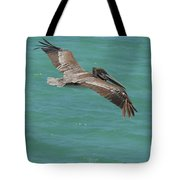 Pelican With His Wings Extended Over The Tropical Aruban Waters Tote Bag