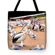 Pelicans At Pearl Beach 4.0 Tote Bag