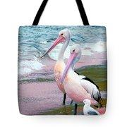 Pelicans At Pearl Beach 5.1 Tote Bag