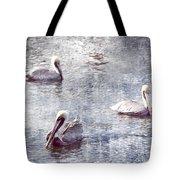 Pelicans At Rest Tote Bag