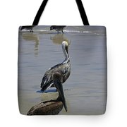 Pelicans Enjoying The Day At Playa Manzanillo Tote Bag
