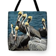 Pelicans Fort Pierce, Fl. Jetty Tote Bag