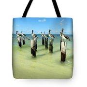 Pelicans On Pier Pilings Tote Bag