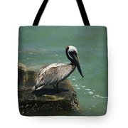 Pelican's Perch Tote Bag