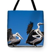 Pelicans Take Flight Tote Bag