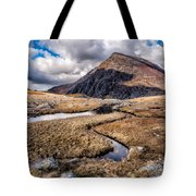 Pen Yr Ole Wen Mountain Tote Bag
