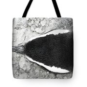 Penguin From Above Tote Bag