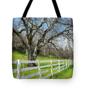 Penn Valley Tree Tote Bag