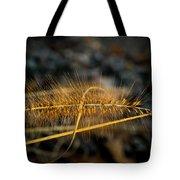Fountain Pennisetum In Evening Sun Tote Bag