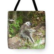 Pennsylvania Porcupine Tote Bag