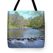 Pennypack Creek - Philadelphia Tote Bag