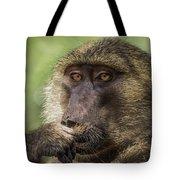 Pensive Baboon Tote Bag