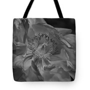 Peonie In Bw Tote Bag