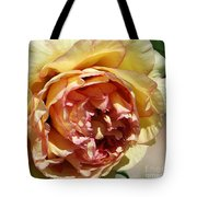 peony 19 Pale Yellow and Pink Tree Peony macro Tote Bag
